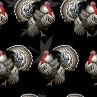 Turkeys and Thanksgiving Dinner - Black
