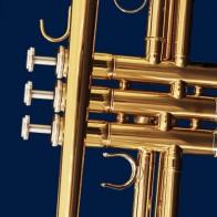 Brass Trumpet on Navy Necktie