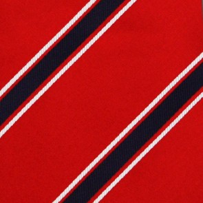 MLB Washington Nationals Poly Stripe Necktie