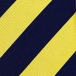 Michigan Wolverines Regiment Necktie