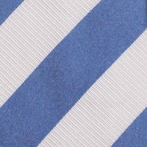 North Carolina Tar Heels Regiment Necktie