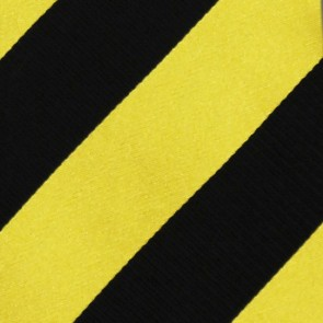 MLB Pittsburgh Pirates Regiment Necktie