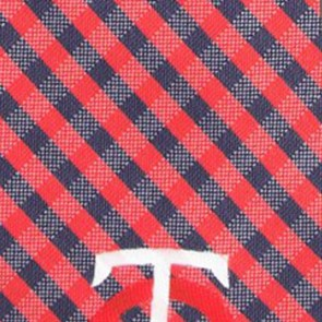 MLB - Minnesota Twins Gingham Necktie