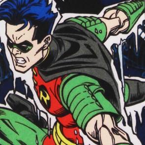 Batman - Mr Freeze Puts Robin on Ice