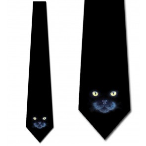 Black Cat in the Dark Necktie