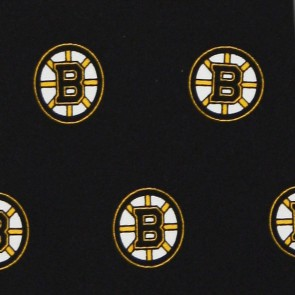 NHL Boston Bruins Prep Necktie