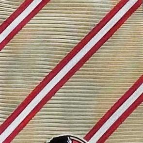 Florida State FSU College Stripe Two Necktie