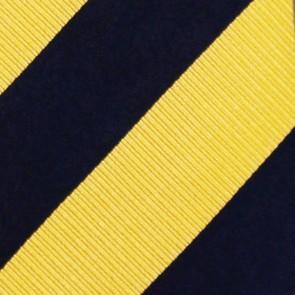 NHL St. Louis Blues Regiment Necktie