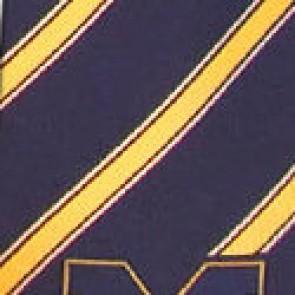 Michigan Wolverines Poly Stripe Necktie