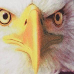 American Freedom Necktie